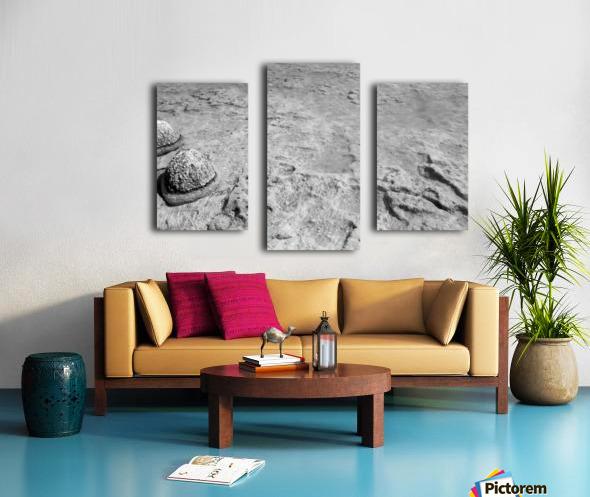 Crystal Clear B&W Canvas print