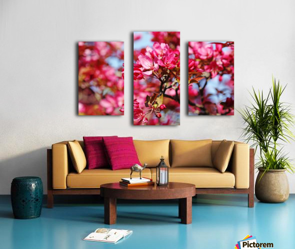 Crabapple Pink Canvas print