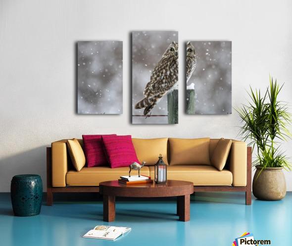 Short Eared Owl - Snow Storm Canvas print