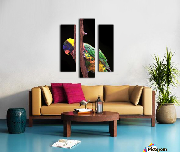 Colorful Bird on branch Canvas print