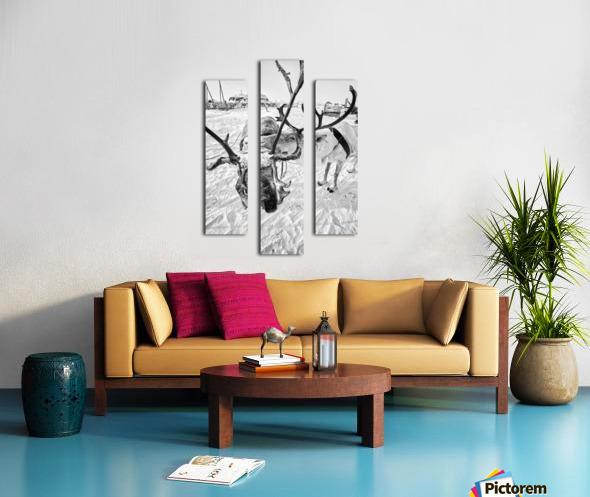 Evenki Reindeer Herding Canvas print