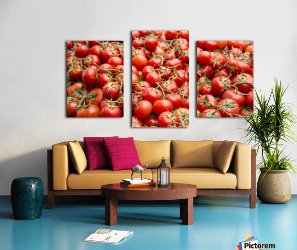 Tomatoes for sale open air market Canvas print