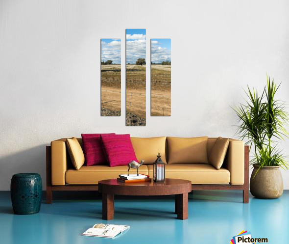 Stubble fields post harvest against blue sky and clouds. Canvas print