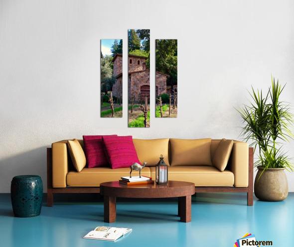 IMG_8112 Canvas print