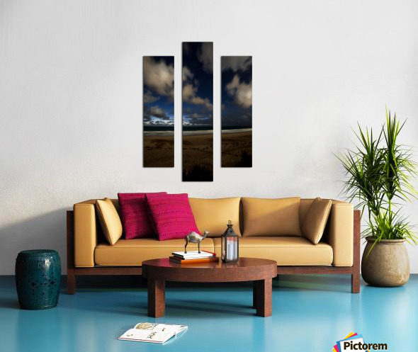 Shadow of the Palm  Canvas print