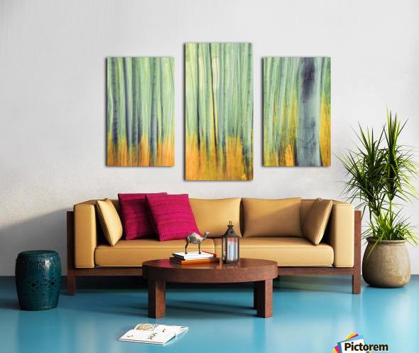 Aspen Trees in movement Canvas print