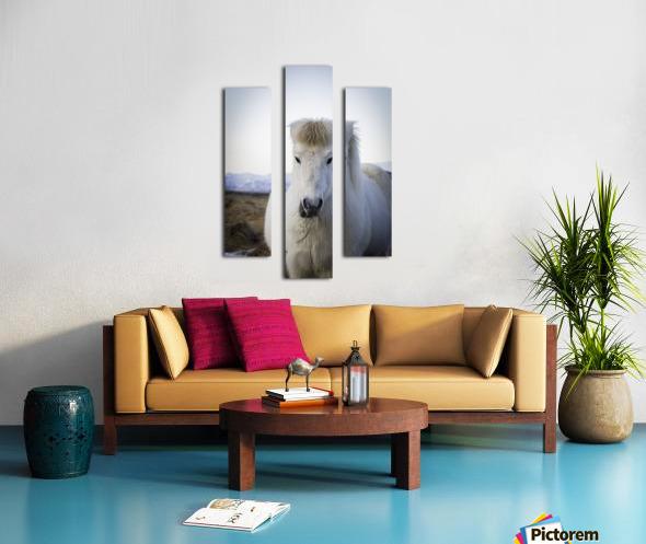 IMG_1184 2 Canvas print