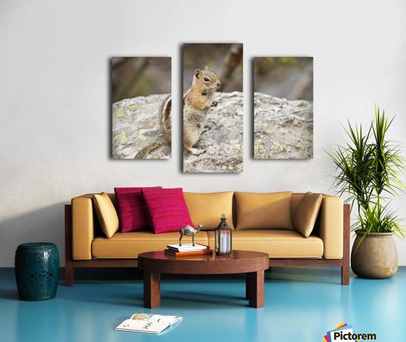Chipmunk 2 Canvas print