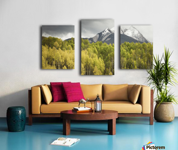 Kebler Pass  Canvas print