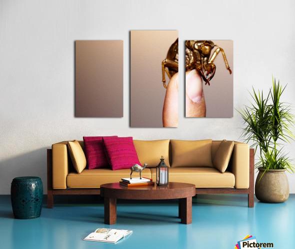 Golden Molt Canvas print
