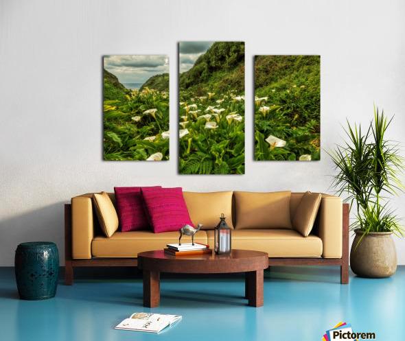 Life is Abundant Canvas print