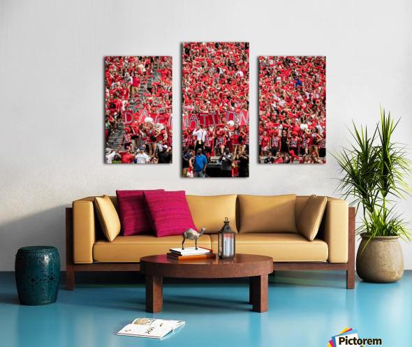 University of Georgia Football   Athens GA 3137 Canvas print