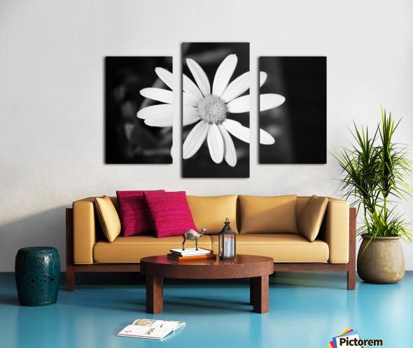 Beautifully White B&W Canvas print