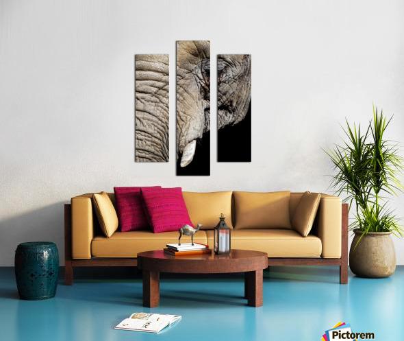 Elephant Close Up Impression sur toile