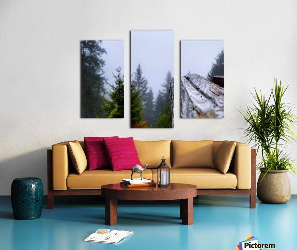Mt Rigi Canvas print