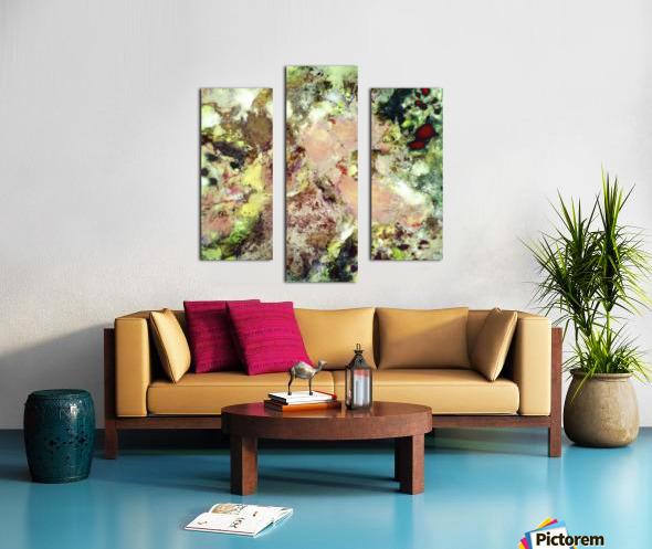 Sugar coated Canvas print