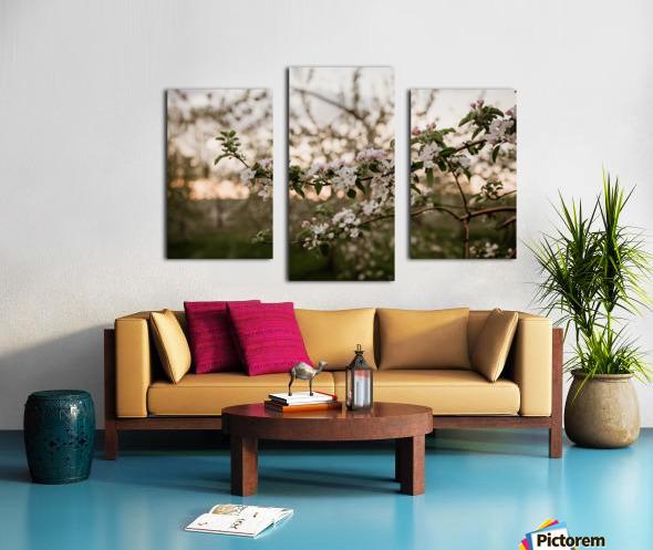Fleurs de pommes Impression sur toile