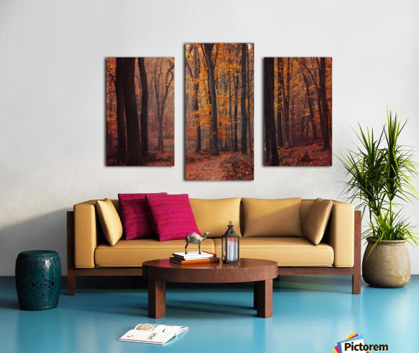 Fall Impressions VIII. Canvas print