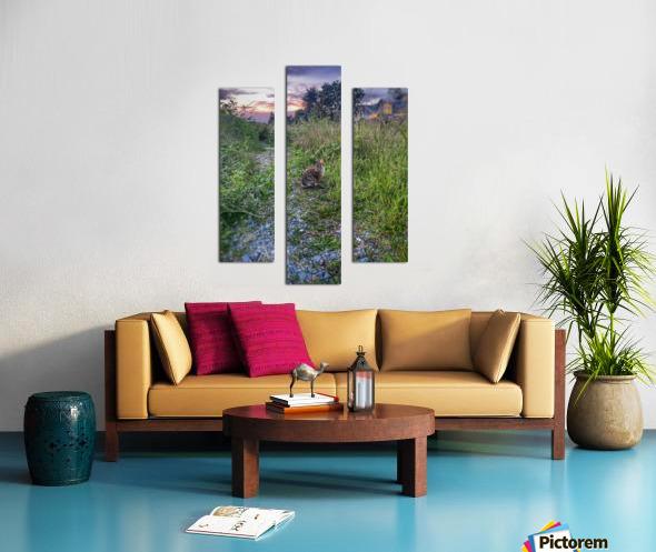 Sunset bunny Canvas print