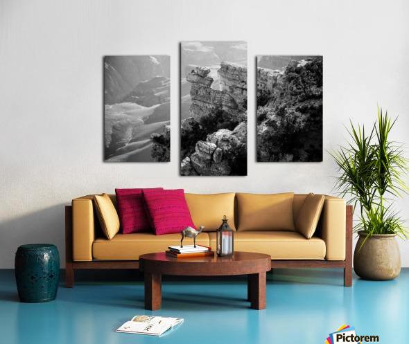 DSC_4863 Canvas print