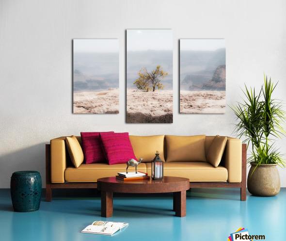 Desert Shrub Grand Canyon 2 Canvas print
