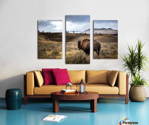 Stormy Bison Canvas print