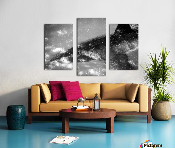 The Beauty and Beast Beneath Canvas print