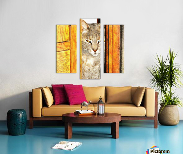 Looking From The Other Side Canvas print