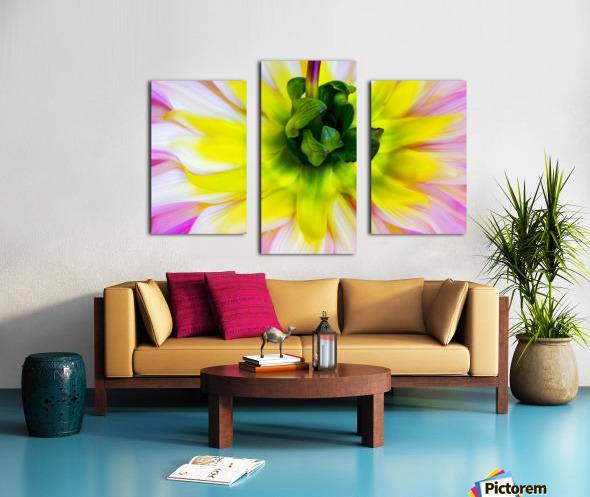 Pink Yellow Green  Canvas print