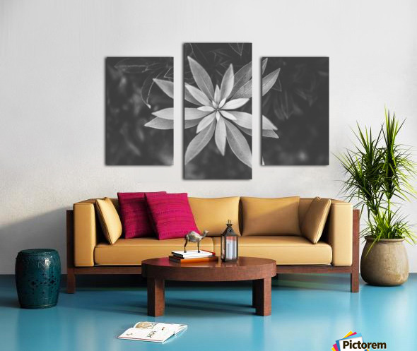 Symmetry of the nature Canvas print