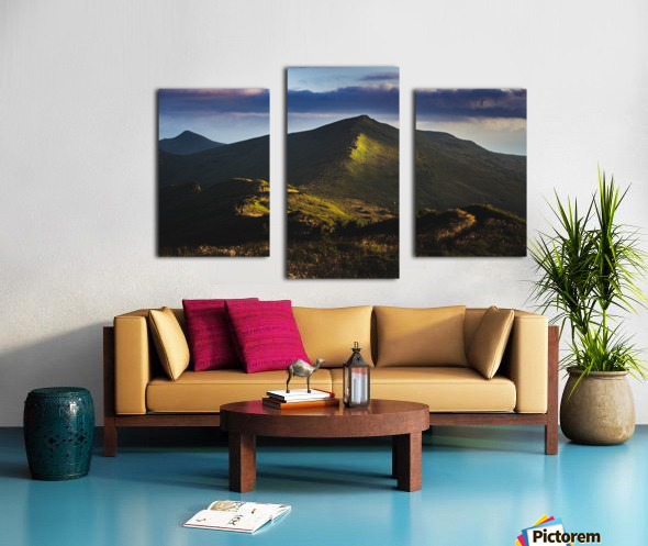 Morning trail Canvas print