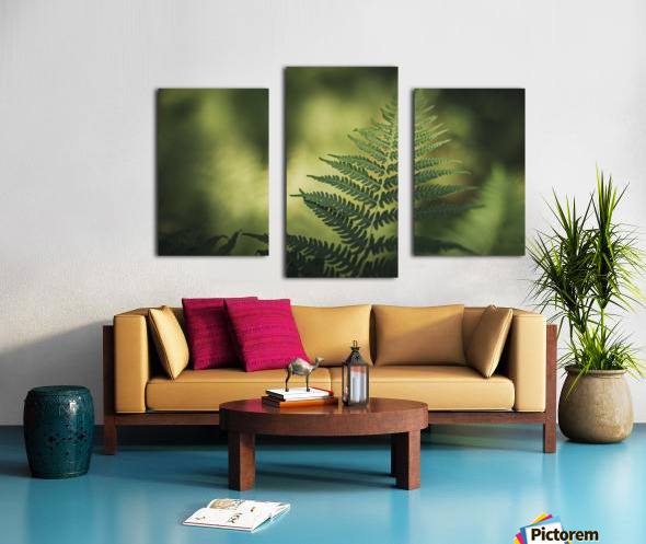 Green as the fern  Canvas print