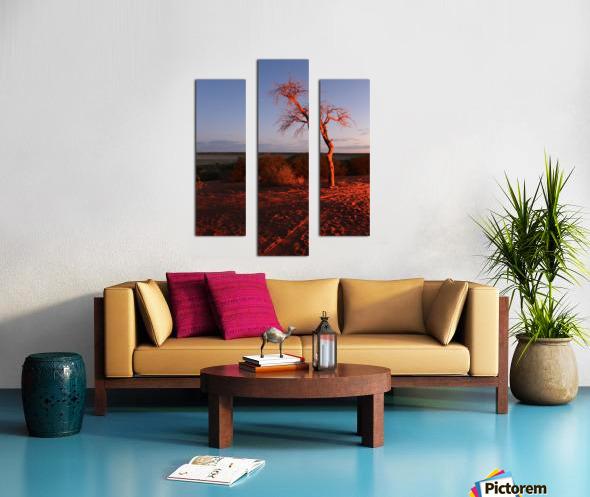 AdriaanPrinsloo 7215 Canvas print