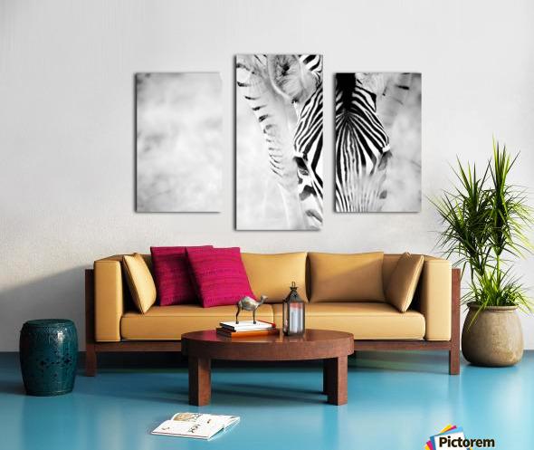 AdriaanPrinsloo 6718 Canvas print