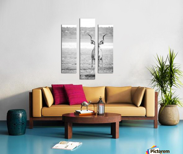 AdriaanPrinsloo 6071 Canvas print