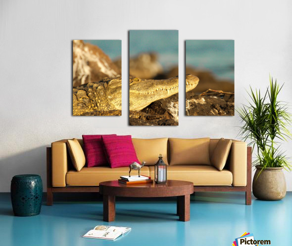 AdriaanPrinsloo 8074 Canvas print