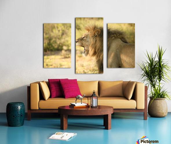 AdriaanPrinsloo 6942 Canvas print