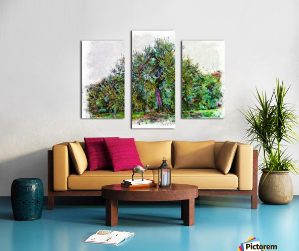 Cascading Olive Tree Canvas print