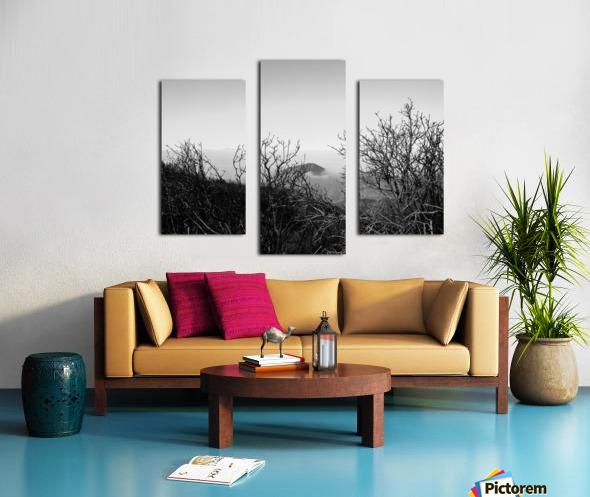 California Clouds through Mountain Brush in B&W Canvas print
