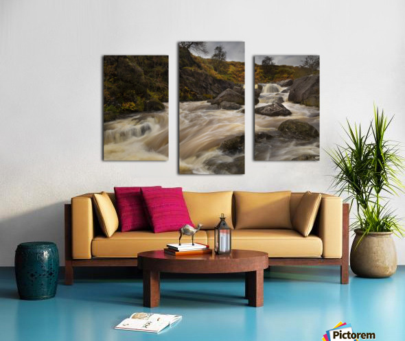 Elan valley watercourse Canvas print