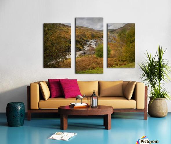 Elan valley landscape Canvas print
