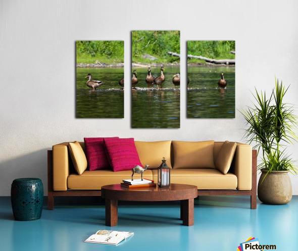 What the duck Impression sur toile