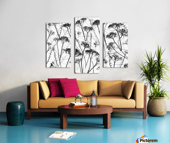Silhouette of dried plants Canvas print