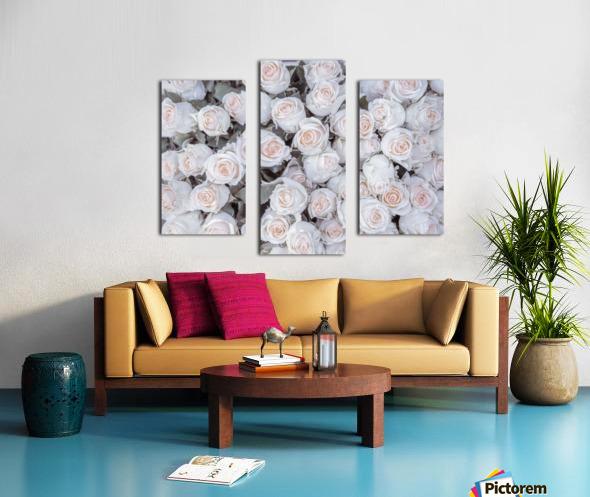 Full frame of Roses Canvas print