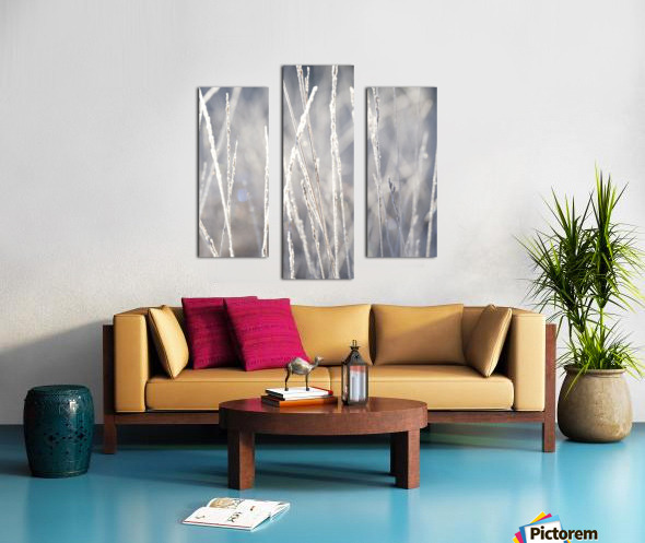 Frost on Grass Canvas print