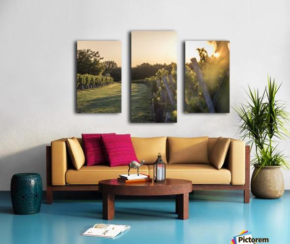 Lussac Canvas print