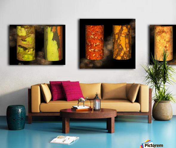 tree bark harmony Canvas print