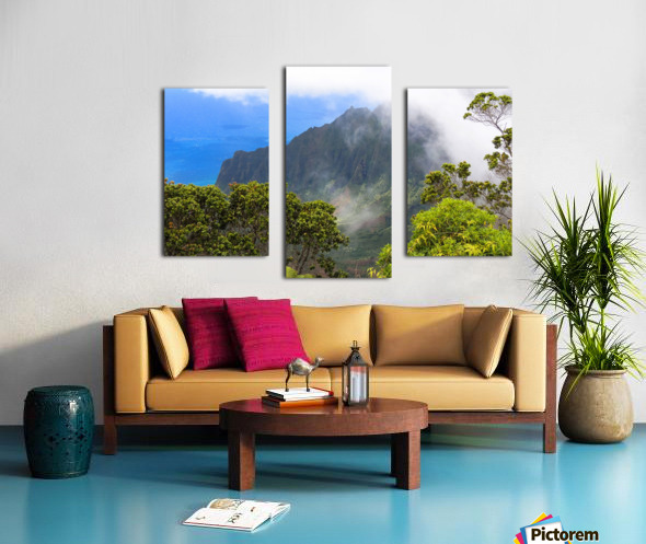 Wild Kauai 3 Canvas print