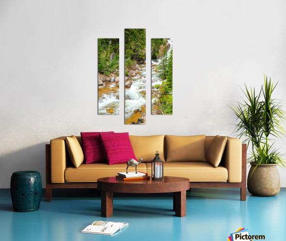 Spring Runoff Chipmunk Canvas print