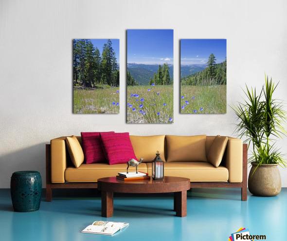 Sierra Nevada in Spring 7 of 8 Canvas print